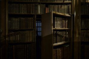 bookcase hidden
